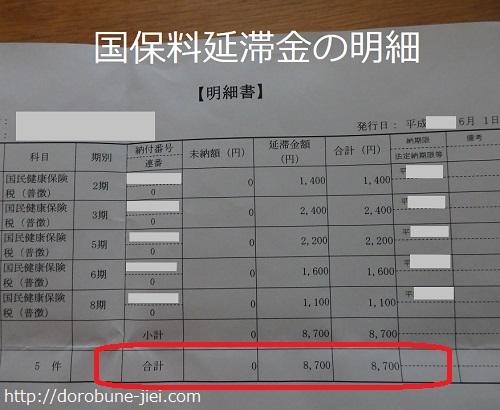 国保料の延滞金明細
