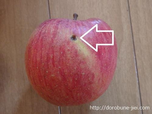 サンふじリンゴ訳アリ