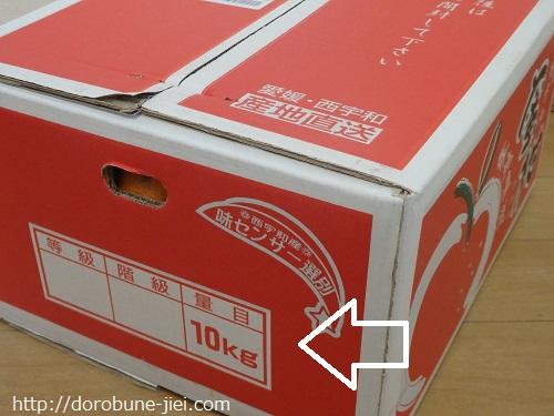 ミカン箱10KG