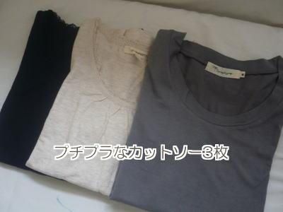 fashion24